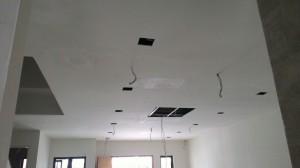 Plaster Ceiling 1