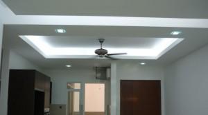 Plaster Ceiling 5