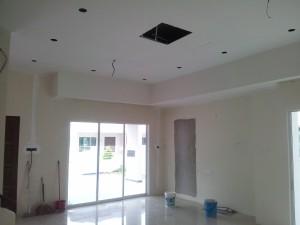 Plaster Ceiling 3